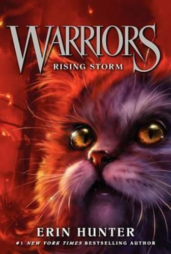 Warriors 4 : Rising Storm